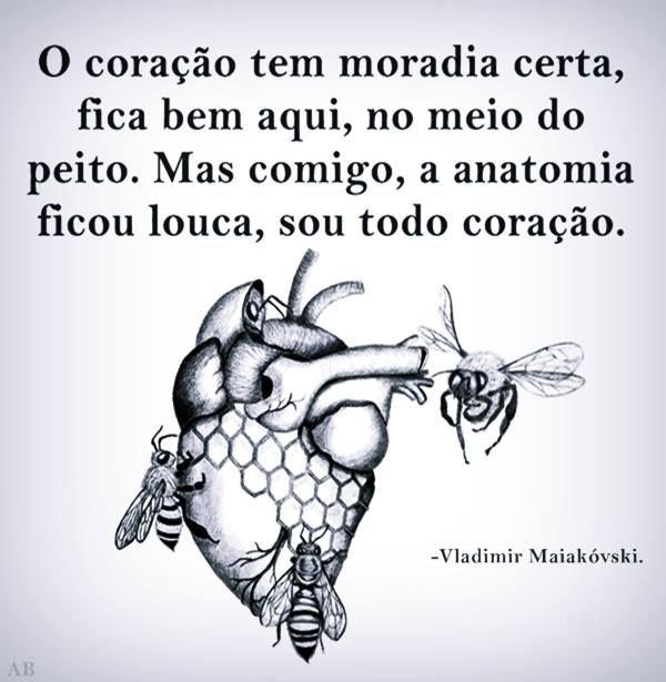 Coração é uma moradia que só as pessoas importantes habitam nele. (Le Coeur est une maison que seules les personnes importantes habitent.)