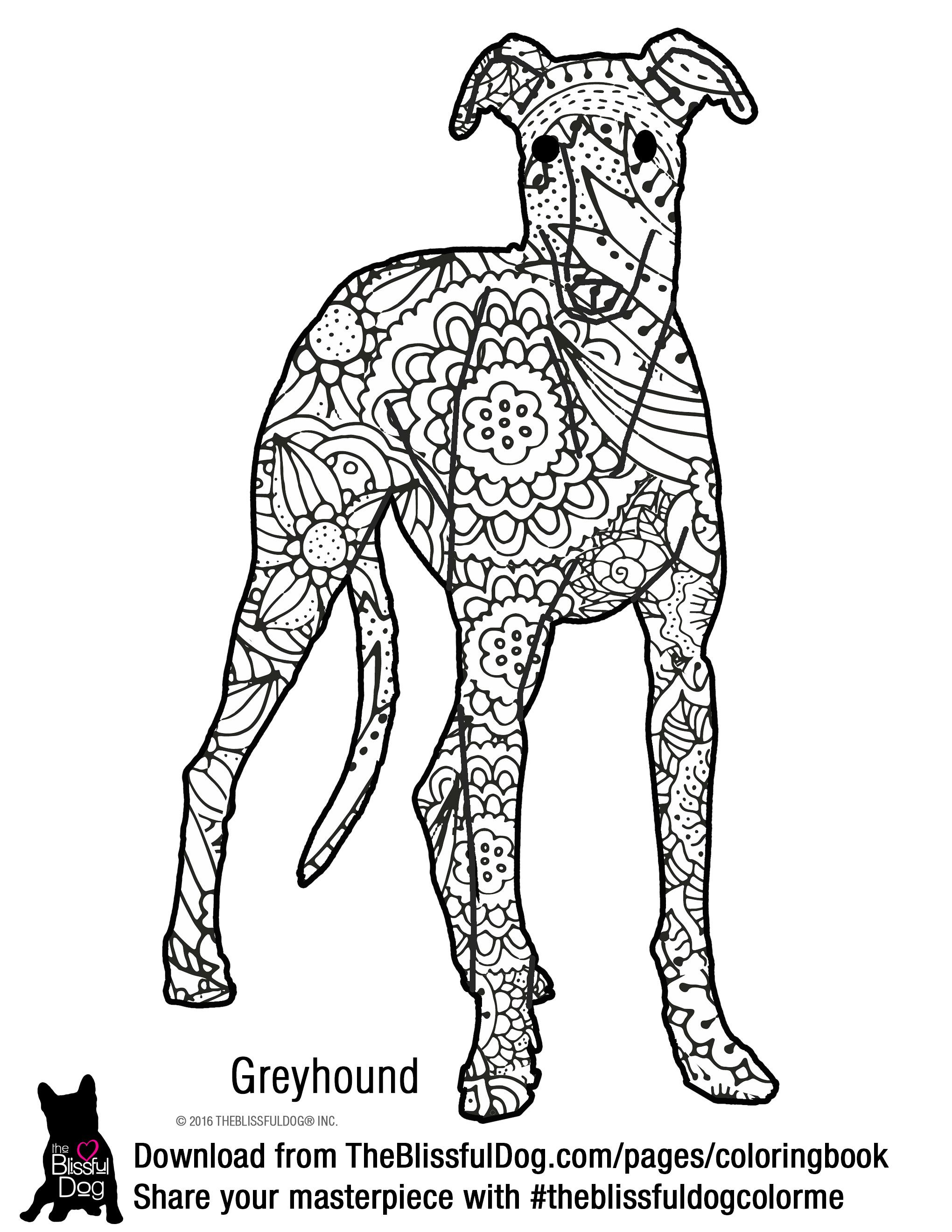 Coloring Book Dog Coloring Page Coloring Books Coloring Book Pages