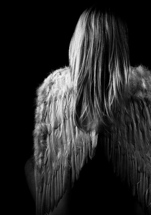 братом фото ангела с крыльями со спины родила