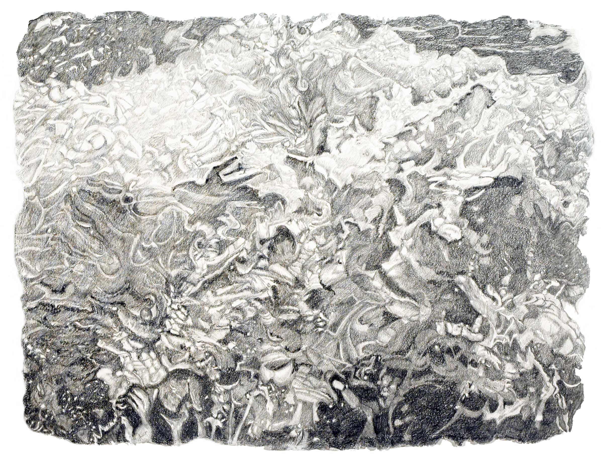 """Jan Aronson        While Rome Burns, Let Me Entertain You, Water #6   Graphite on Twinrocker Paper   2008  19"""" x  25"""""""