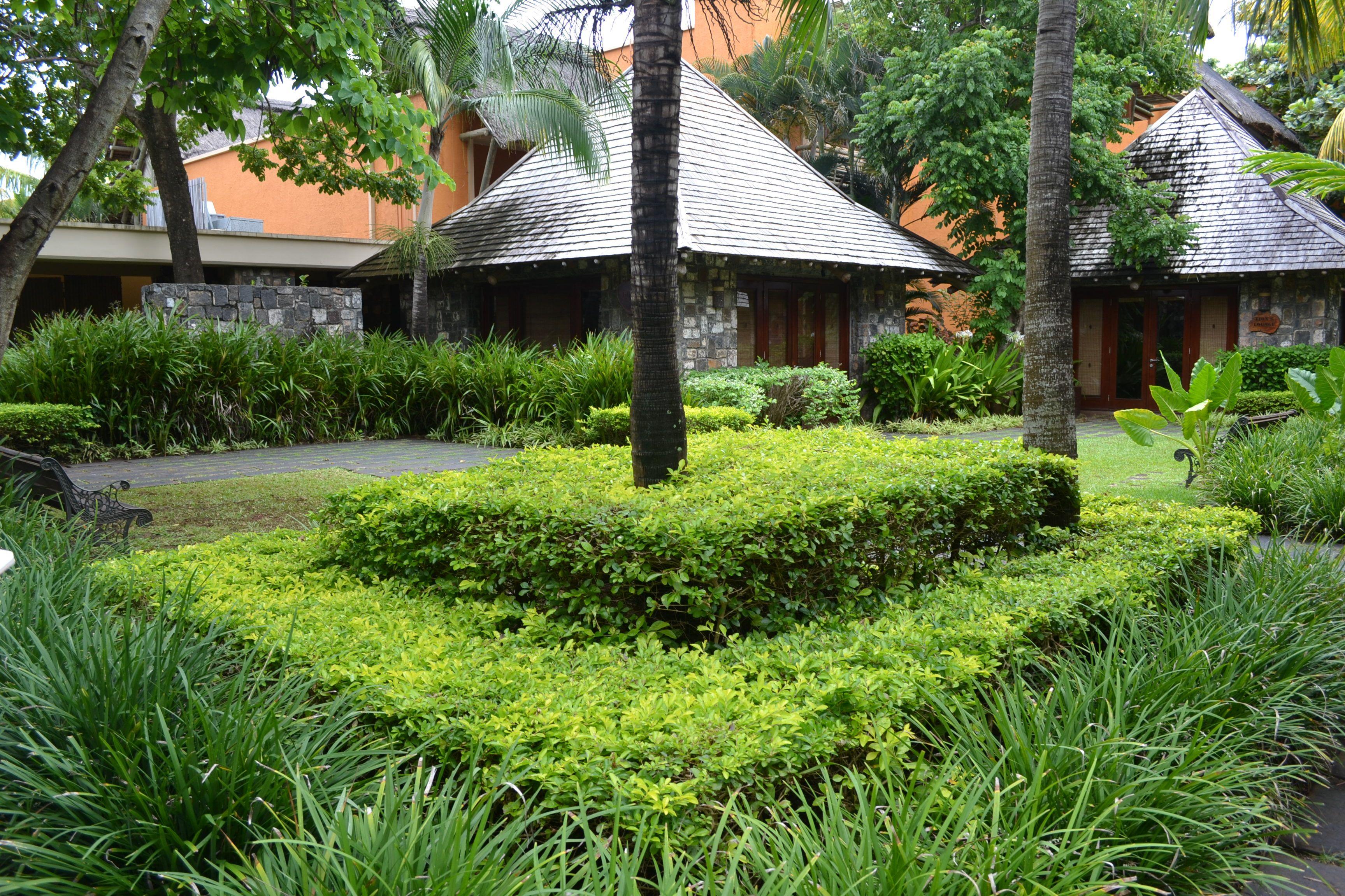 Duranta Et Dianella Mauritius Garden Resort