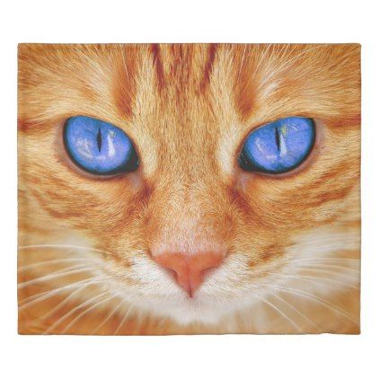 Ginger Cat With Blue Eyes Duvet Cover Zazzle Com Tabby Cat Pictures Cat With Blue Eyes Orange Tabby Cats