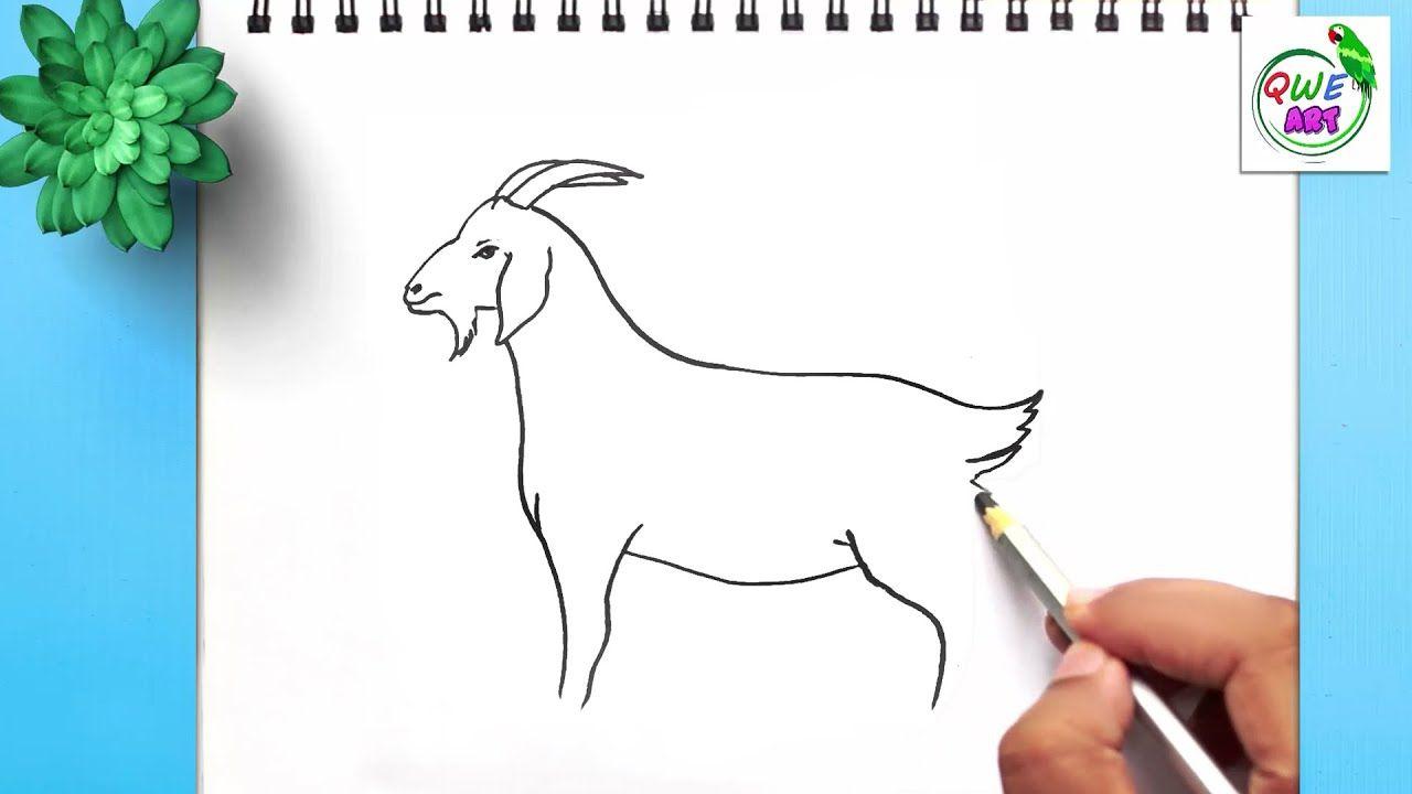 b74c796fb036b8471585fbd5a635f8e1 » Simple Goat Drawing