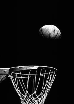Flaminglizard Photography Sports Basketball Basketball Photography Basketball Art