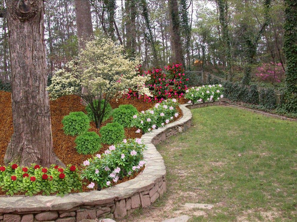 Hydrangeas hostas other shade tolerant plants shrubs for Garden design inc