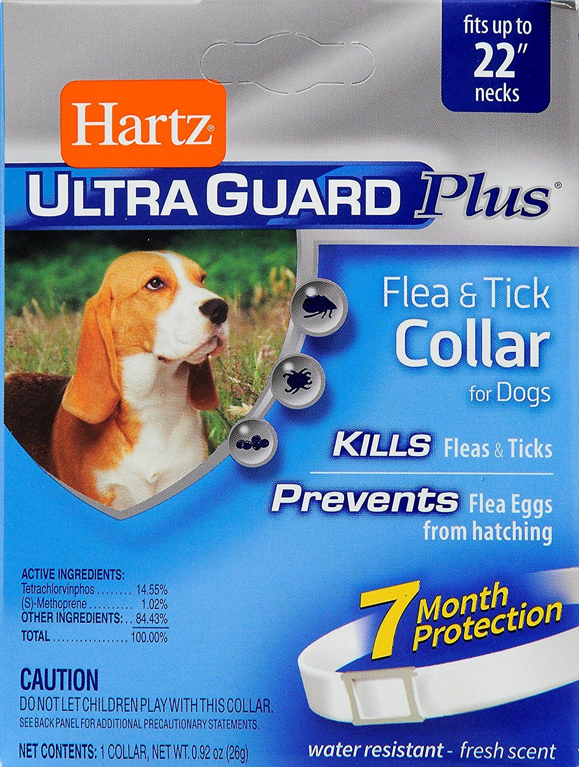 Hartz Ultraguard Plus Flea Andtick Dog Collar Want Additional Info Click On The Image This Is An Affiliate Link A Ticks On Dogs Fleas Dog Potty Training