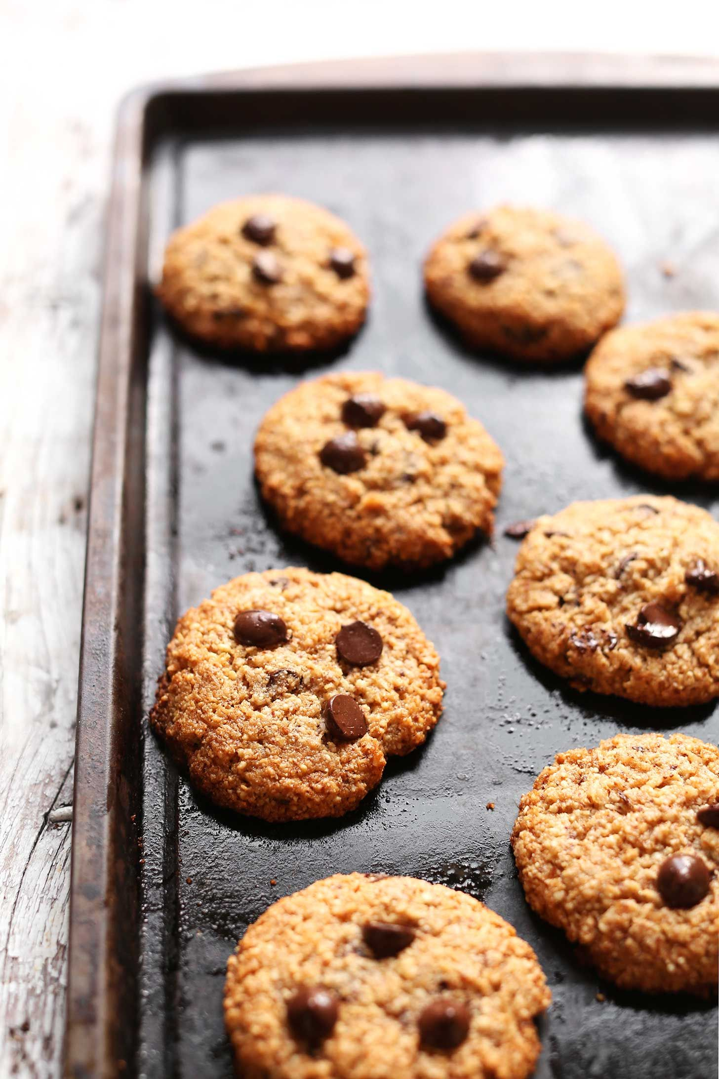 The Best Almond Meal Chocolate Chip Cookies Vegan Gf
