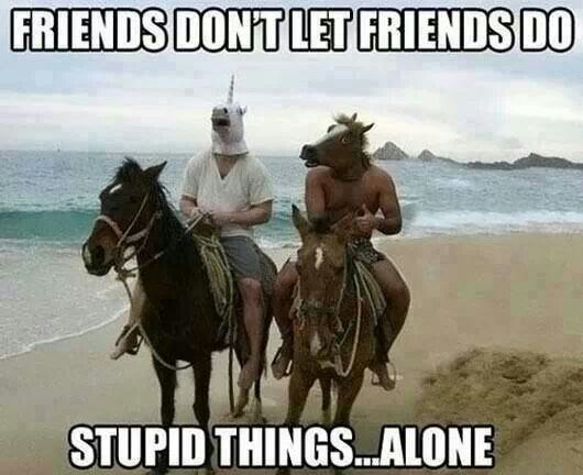 Best Friends Forever Meme Funny : Stupid things id do pinterest memes funny things and random humor