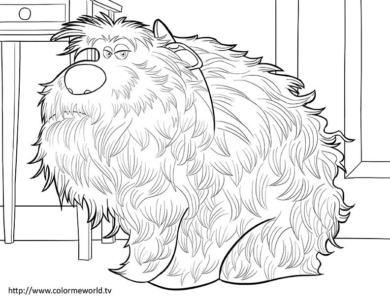 The Secret Life Of Pets Coloring Page Coloring Pages Pinterest