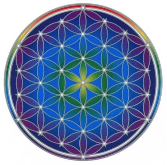Fleur De Vie à Imprimer Format A4 Gratuit Recherche Google Mandala Fleur De Vie Mandala Fleur De Vie Tatouage