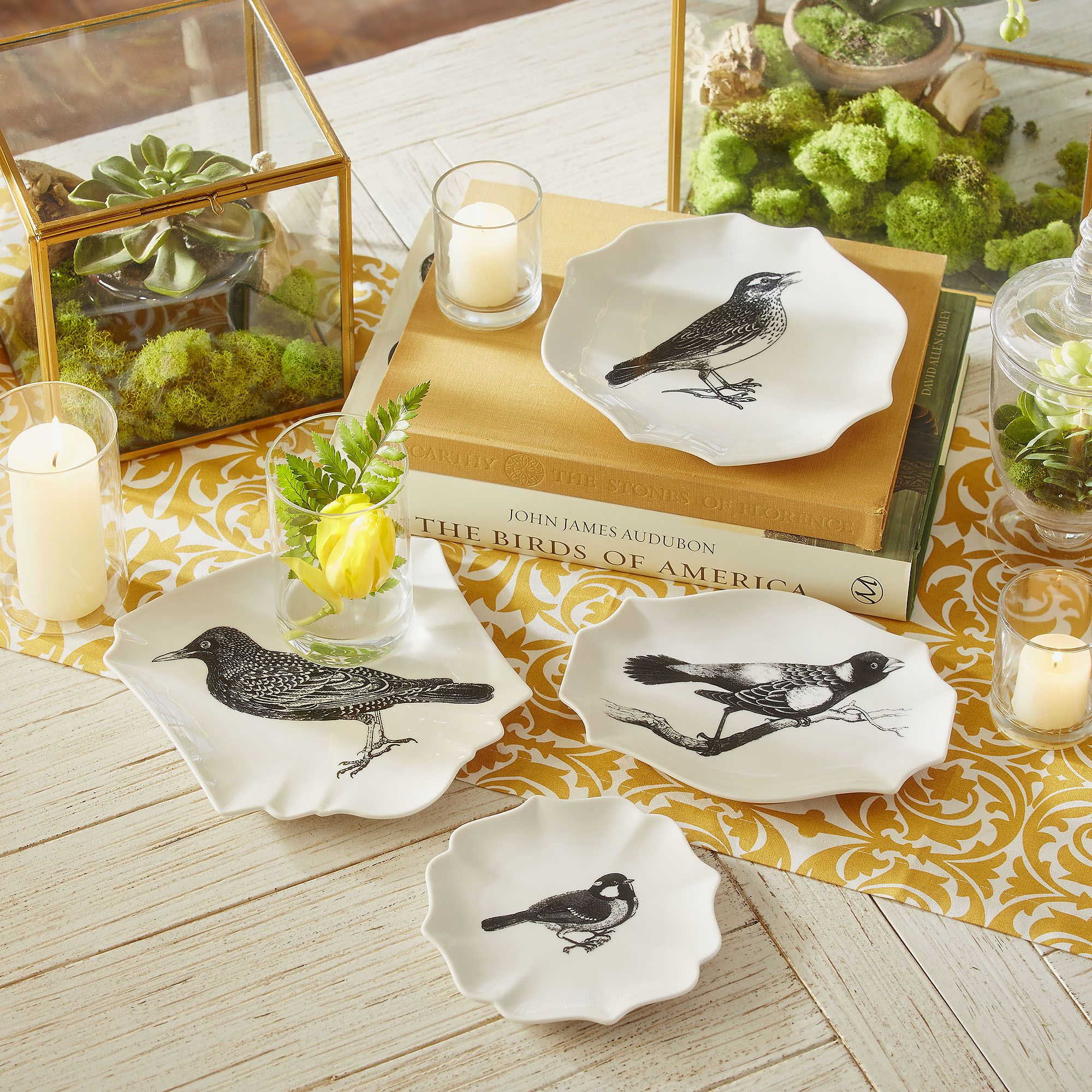 Decorative Bird Plates | Wall Plate Design Ideas