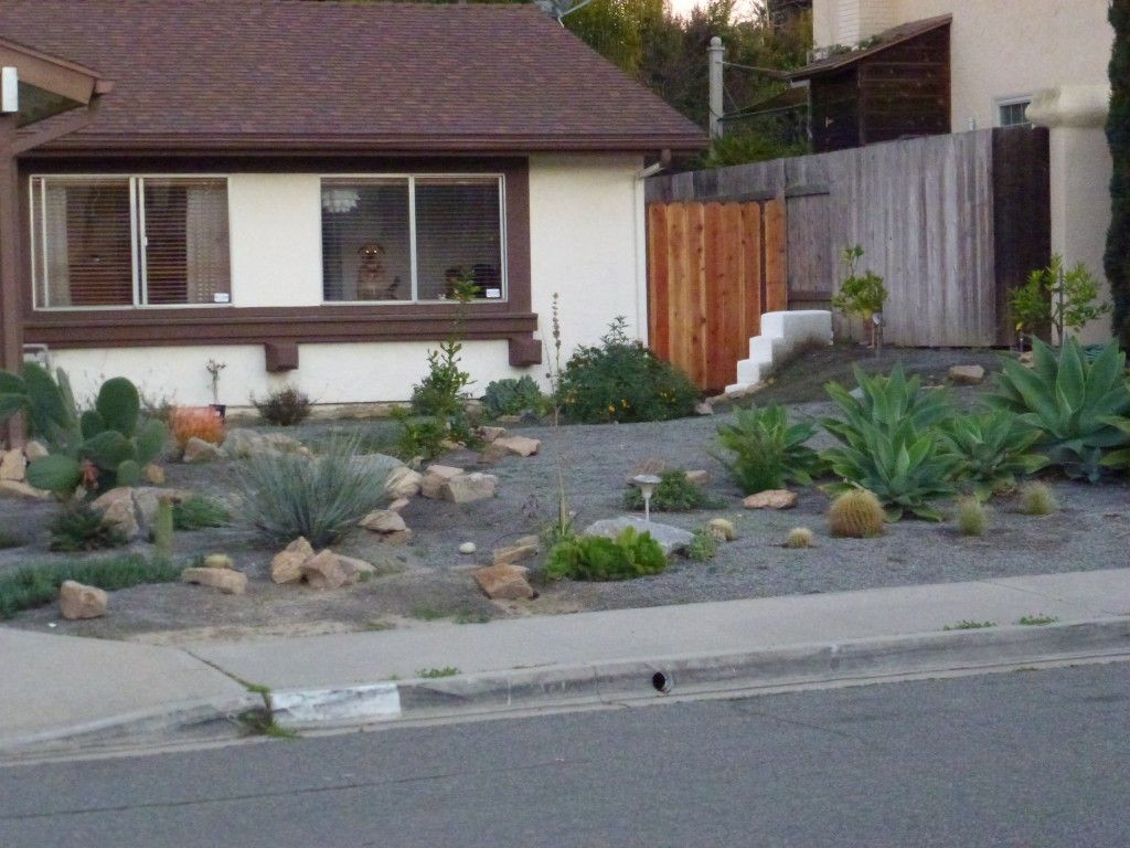 Landscaping Ideas With No Gr Lawn Front Yard Desert Vibe And A Demon Watches From The Window