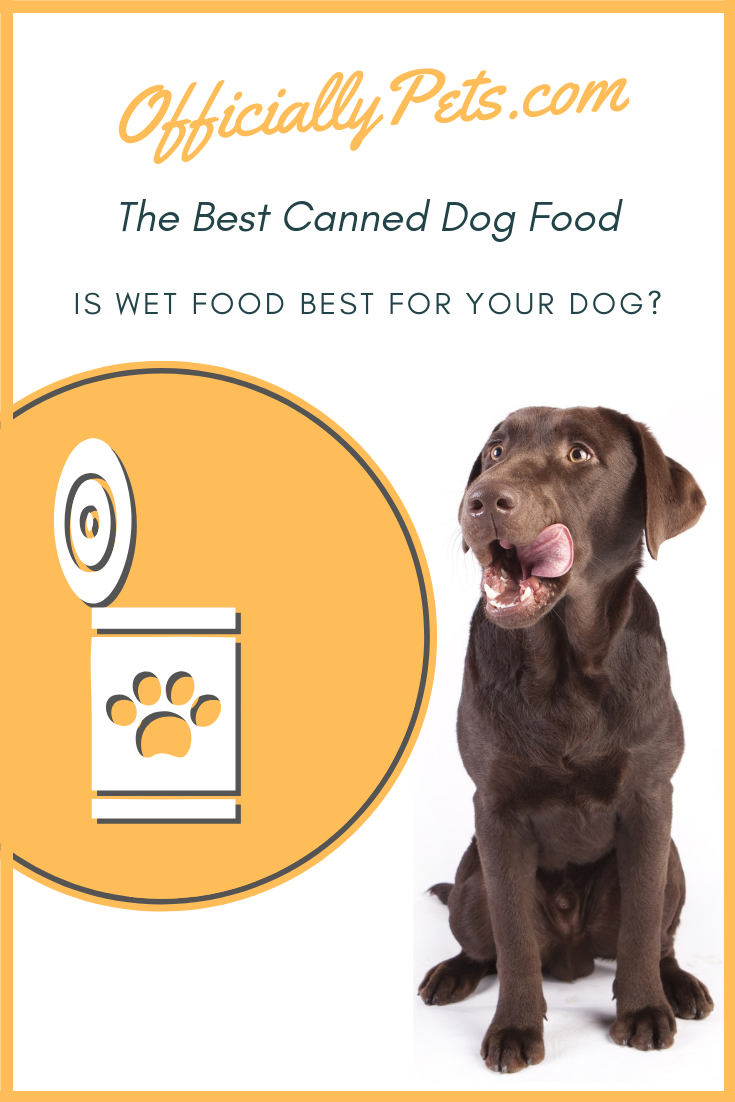 The Best Canned Dog Food Is Wet Dog Food Best For Your Dog Giving Your Dog A Healthy Diet Is Essential But Is Best Dog Food Dog Food Recipes
