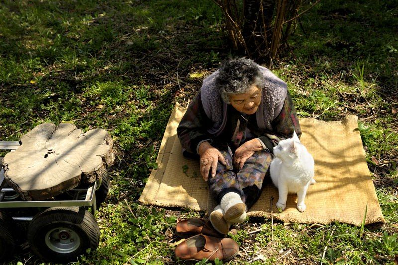 Miyoko Ihara has been taking photographs of her grandmother, Misao and her beloved cat Fukumaru since their relationship began in 2003. Their closeness has been captured through a series of lovely photographs. 11-27-12 / Miyoko Ihara