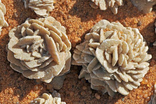 rose des sables sahara rocks pinterest minerals geology and crystals minerals. Black Bedroom Furniture Sets. Home Design Ideas