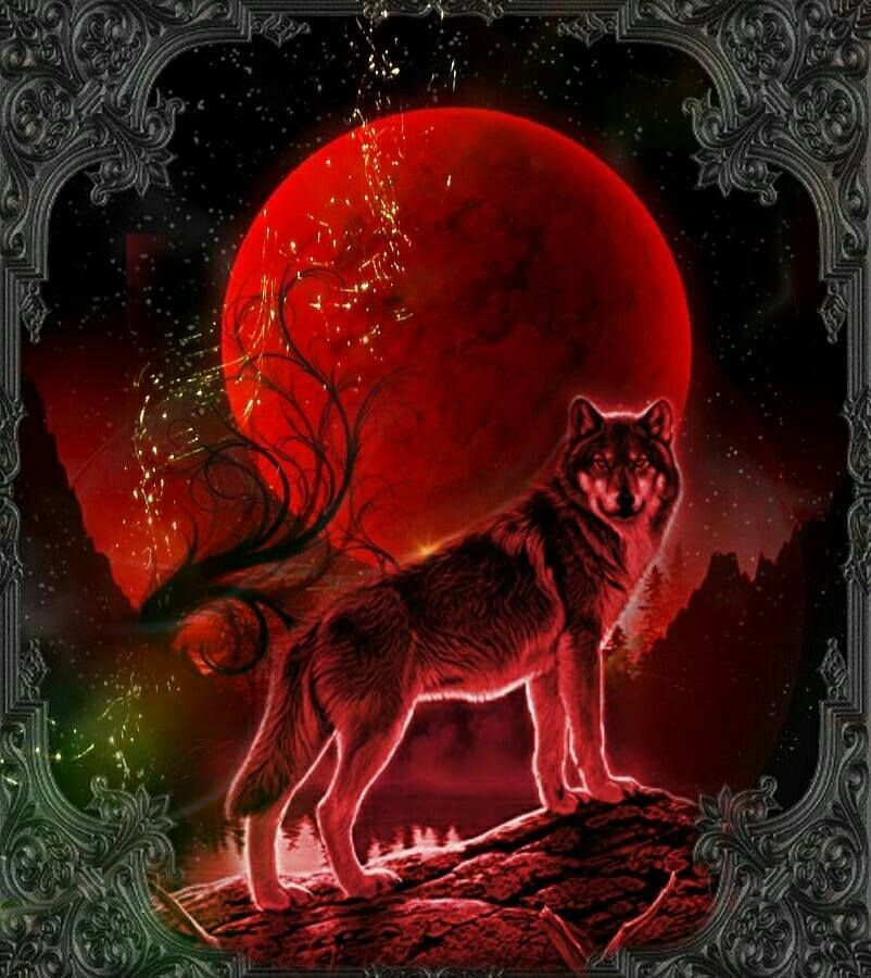 Https Www Facebook Com Norleenbrown1959 Photos A 1190061261006984 2196035883742845 Type 3 Fantasy Wolf Wolf Painting Wolf Artwork Anime wallpaper red wolf