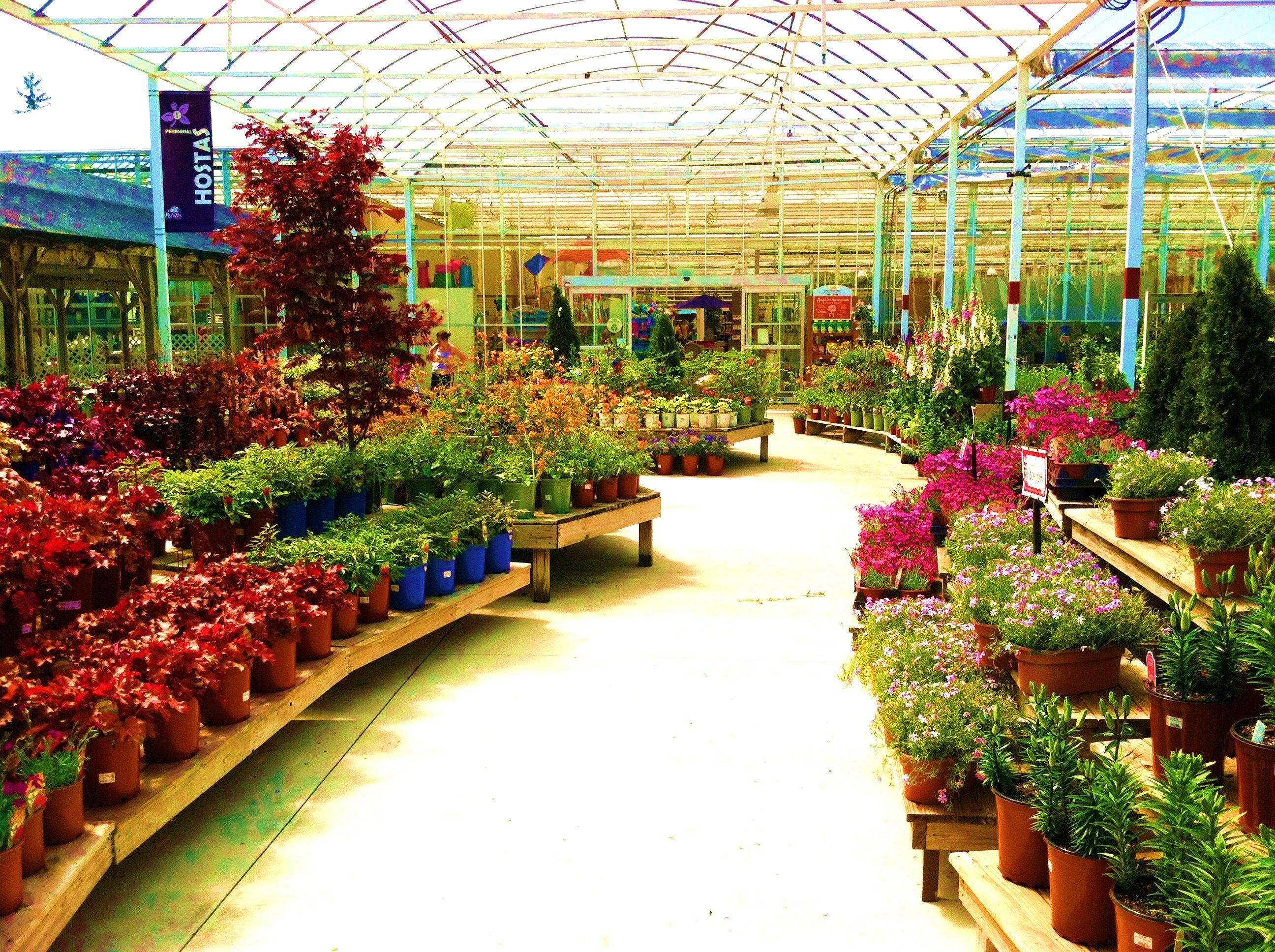 Armstrong Garden Centers Santa Monica Los Angeles Ca Los Garden