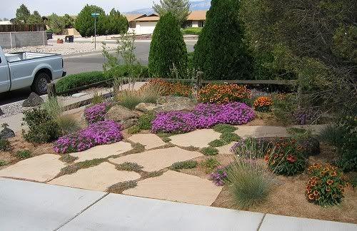 Arizona front yard landscaping ideas xeriscaped front for Xeriscaped backyard design