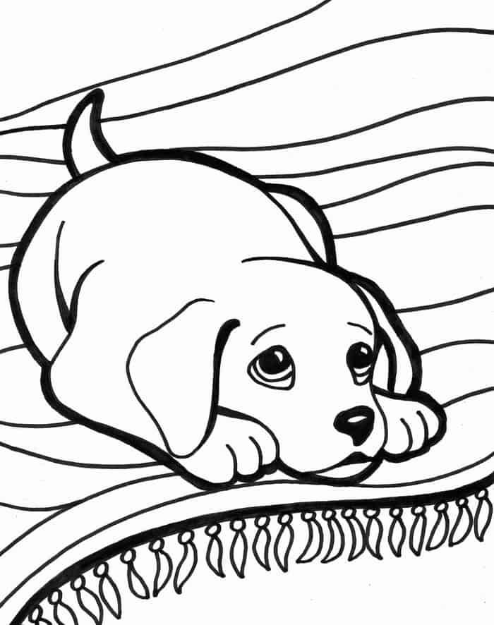 Dog Coloring Pages For Adults Printable #halloweencoloringpages