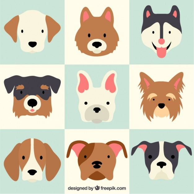 Racas Cao Adoravel Animation Pinterest Dog Illustration Dogs