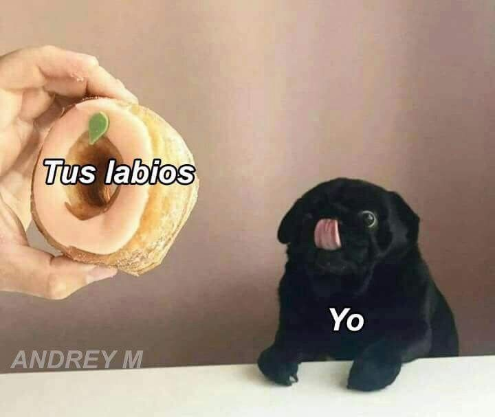 Pin De Dayyi Tovar En Memes Memes Para Mi Novio Frases De Amor Graciosas Memes Amor
