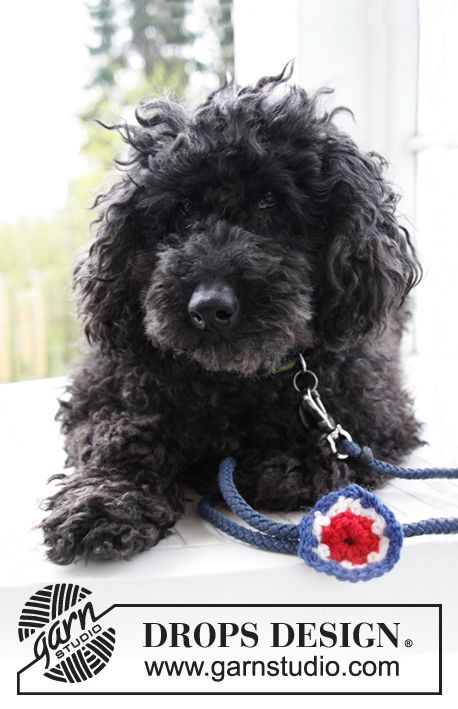 DROPS National day decoration with flower for your Dog in \