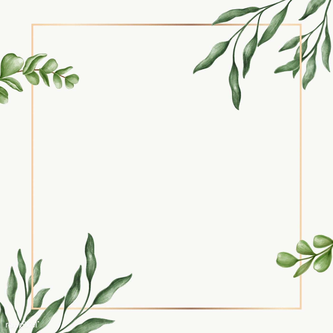 Green Leaves Frame Transparent Png Premium Image By Rawpixel Com Noon Green Leaf Background Leaf Background Floral Border Design