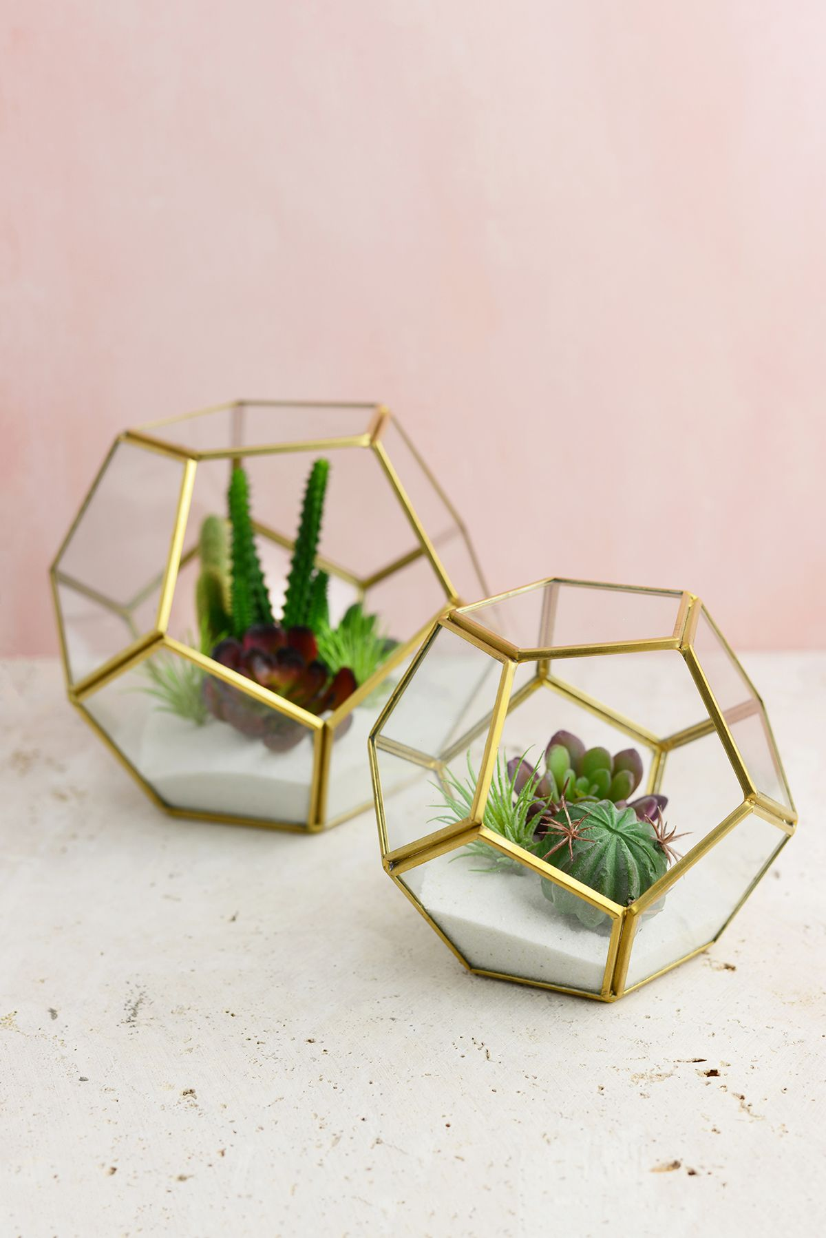 Hira Glass & Brass Terrarium Display Box 75X 75