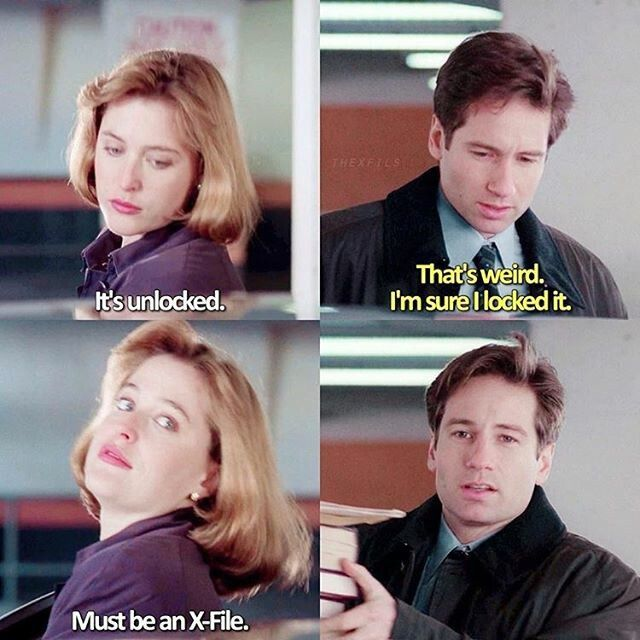 Scully Mulder The X Files X Files Mulder Scully Mulder
