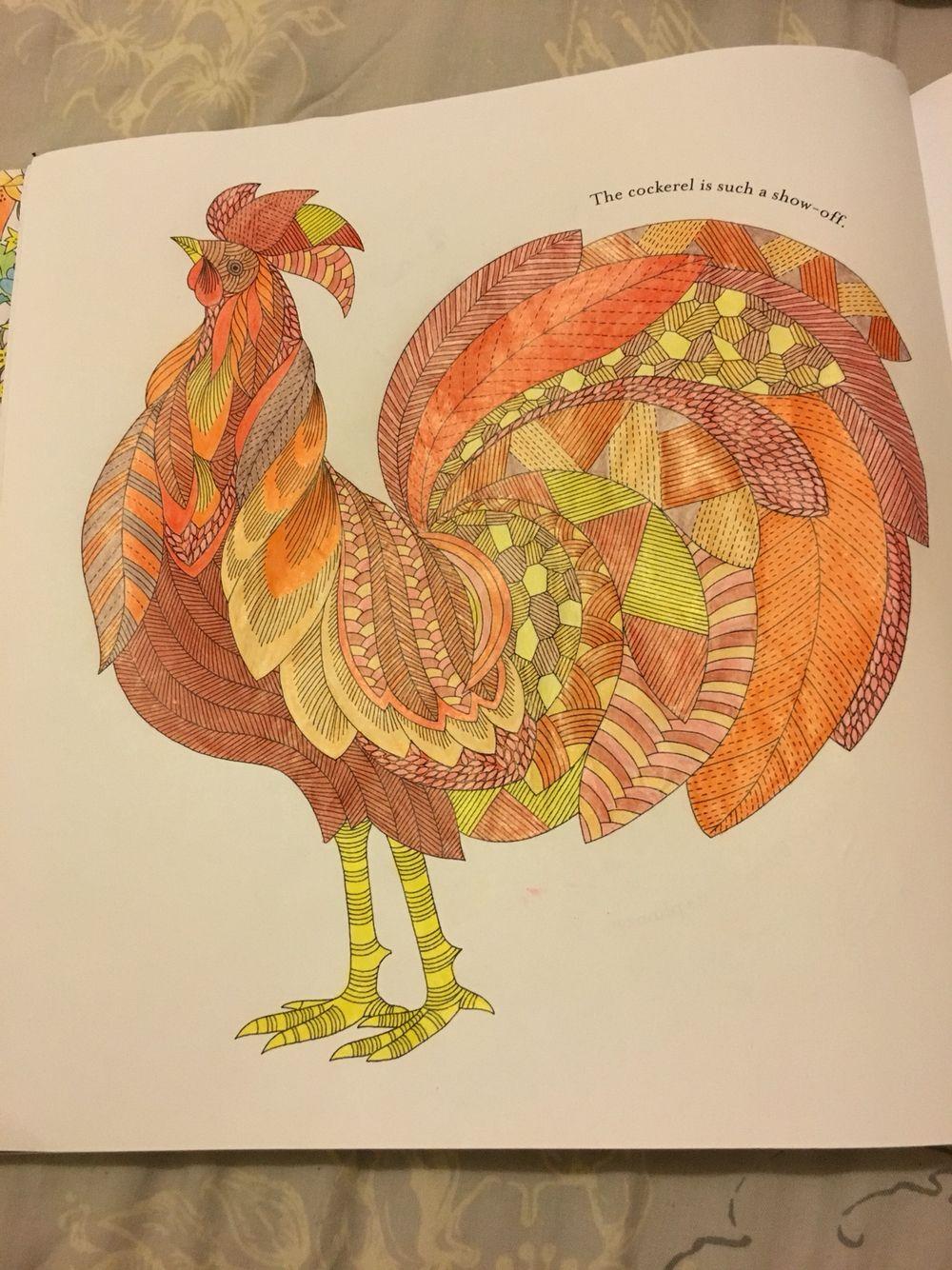 Millie Marottas Animal Kingdom Cockerel