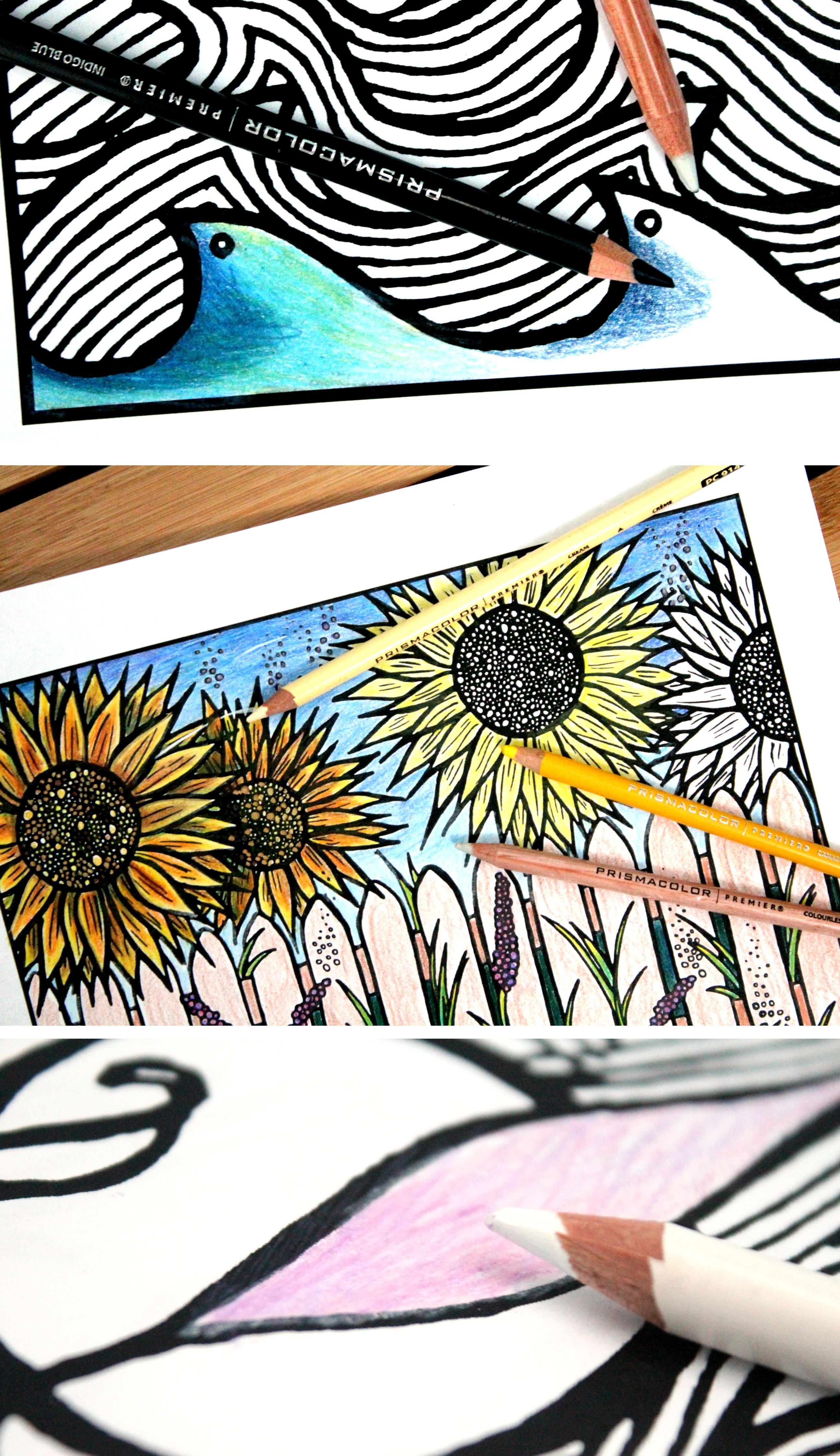 Color Adult Coloring Pages Like A Pro Using Prismacolor Pencils With These Easy Blending Tips