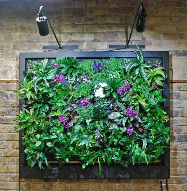 Vertikaler Garten Innen vertikaler garten gestalten sie ihr zuhause mit pflanzen