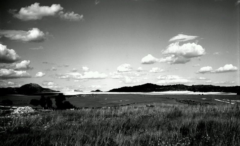 Black and white nature photography wallpaper in nature picspaper