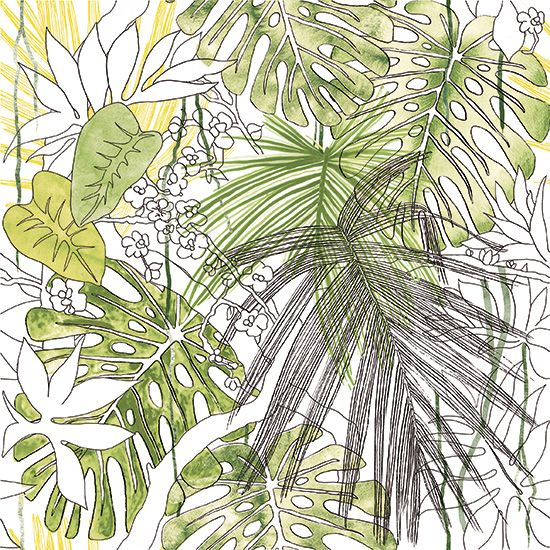 Ornamenta collection jungle floral dessin de v g tation exotique carreau gr s c rame 60x60 - Dessin vegetation ...