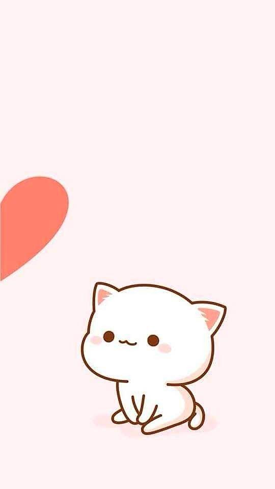 Cuteee Wallpaper Iphone Boneka Hewan Seni Kucing