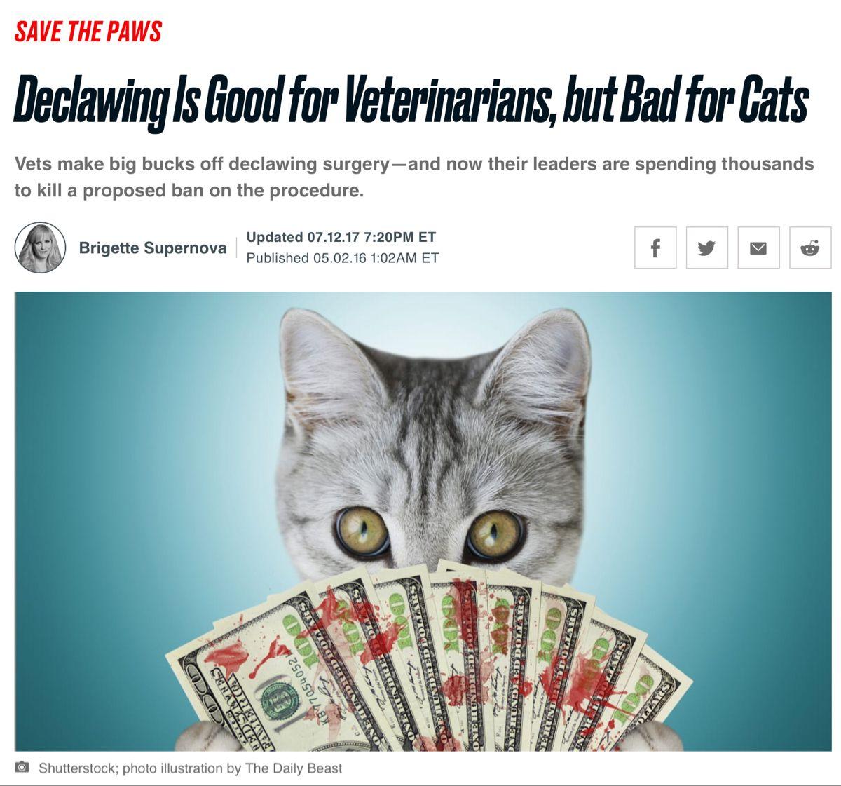 Avmameets Catvets Avmavets Aahahealthypet Vettech Aaha2020 Aahaday Njvma Marspetcare Banfield Celasersvet Vcapethe Cat Vet Vet Med Pet Care