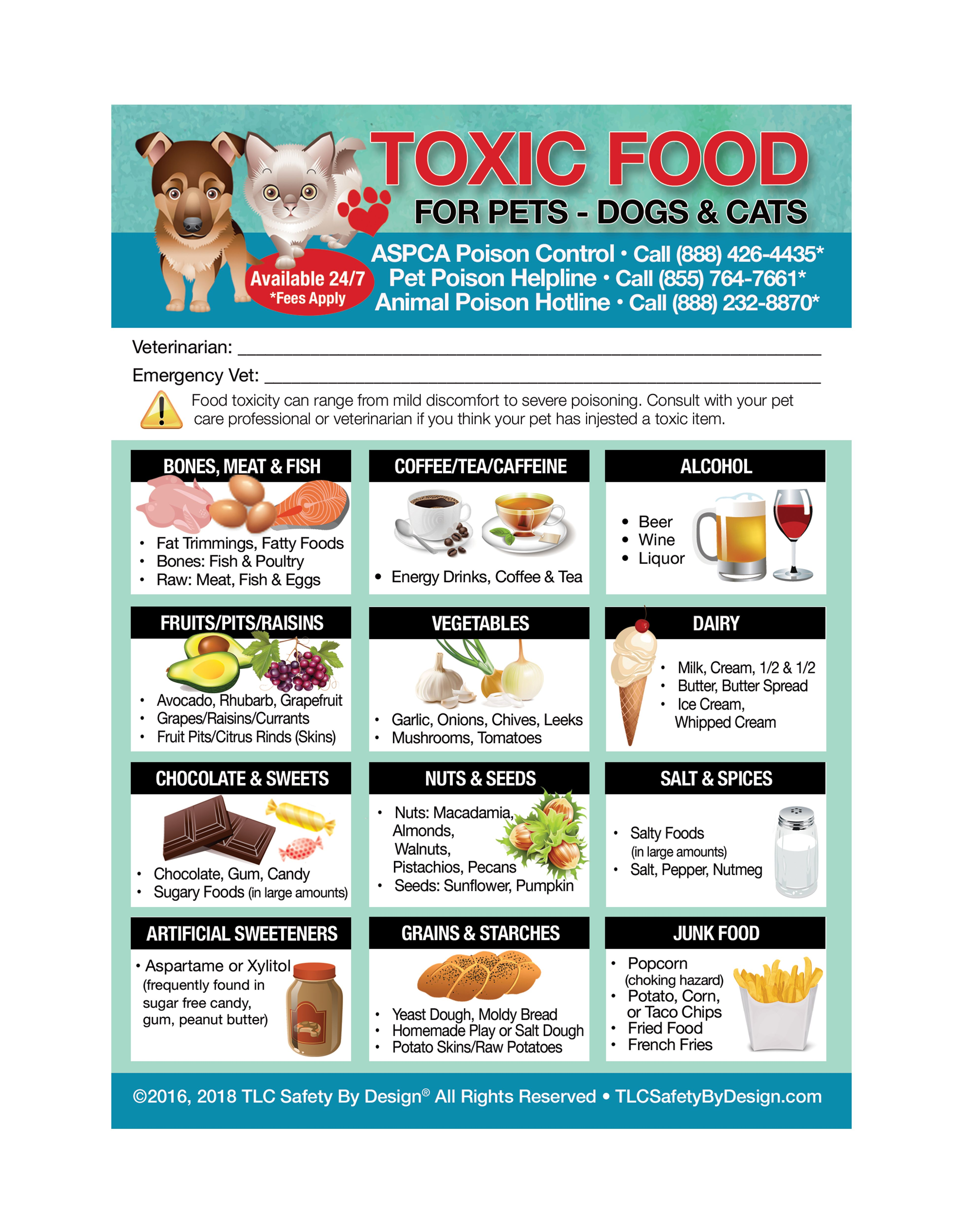 Enhanced Toxic Foods For Pets Dogs Cats 5 X7 Fridge Safety Magnet