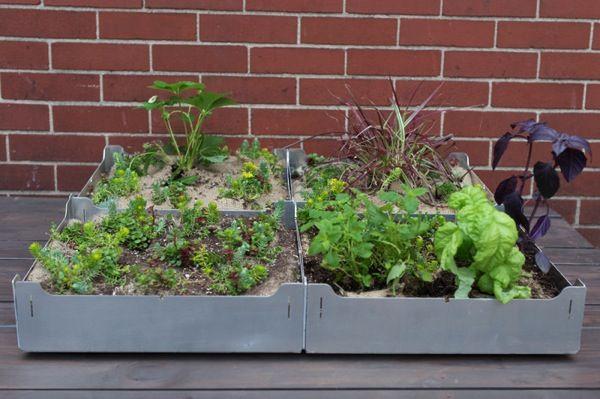 コンクリート上でも家庭菜園を Diy菜園タイル Fairmount で屋上や