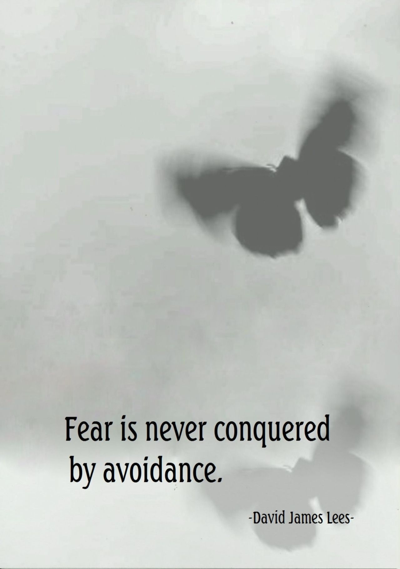 Fear is never conquered by avoidance. (David James Lees) source of image quotesgram