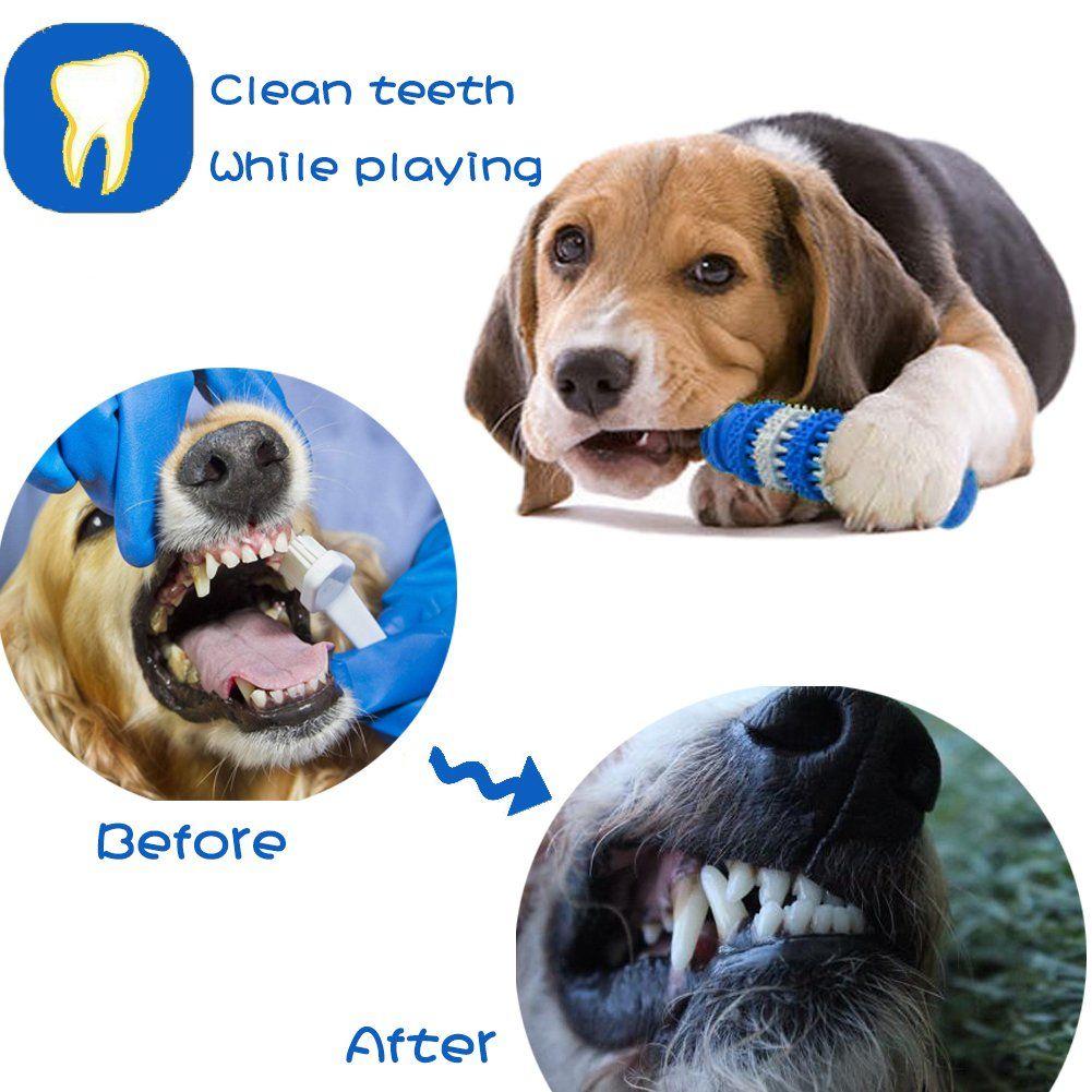 Yitour Dog Mint Chew Bone Toys Sensory Rubber Edible Molar Stick