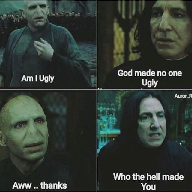 31 Funniest Voldemort Memes That Will Make You Laugh Uncontrollably