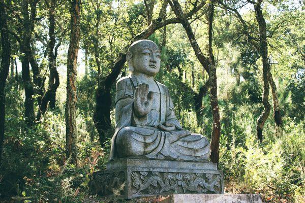 Garden Of Peace Project Garden Ftempo
