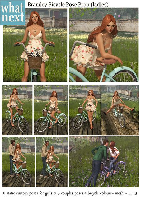 what next} Bramley Bicycle Pose Prop - Pose Fair preview in