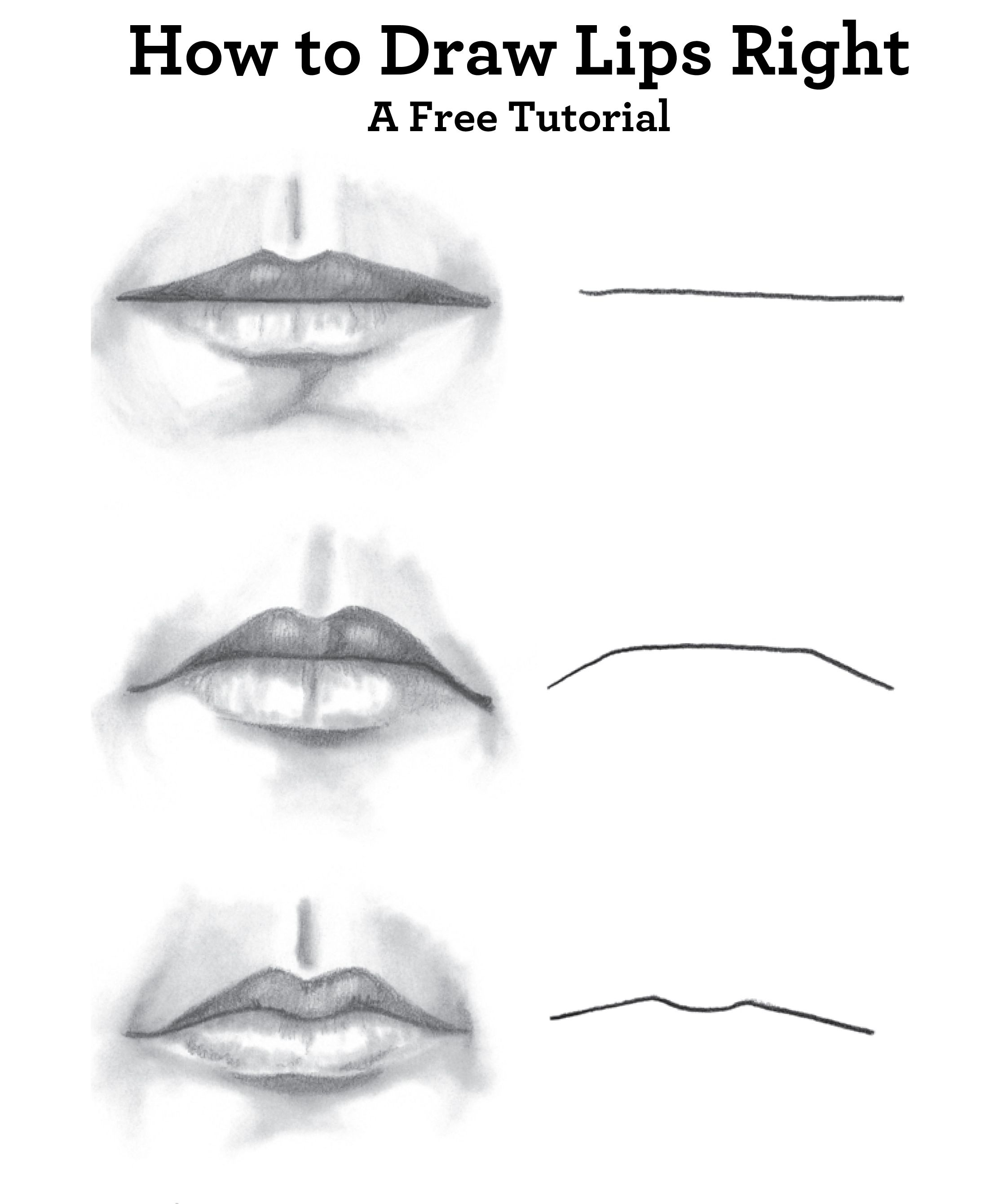 Guide To Drawing Faces: How To Draw A Face, Nose, And Lips