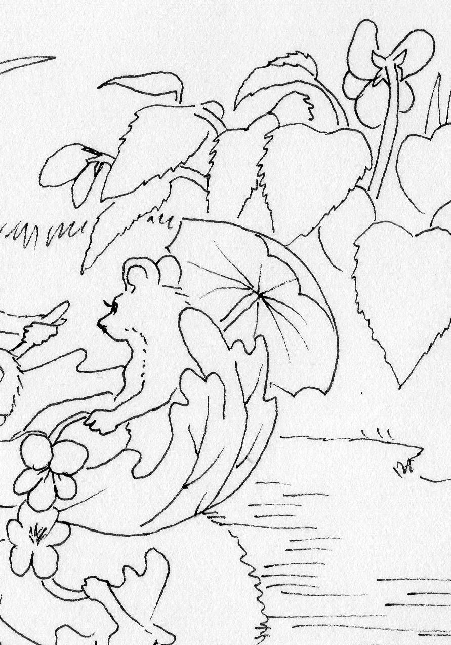 Pin by Carla Koch on Just for Fun coloring book and fun ...