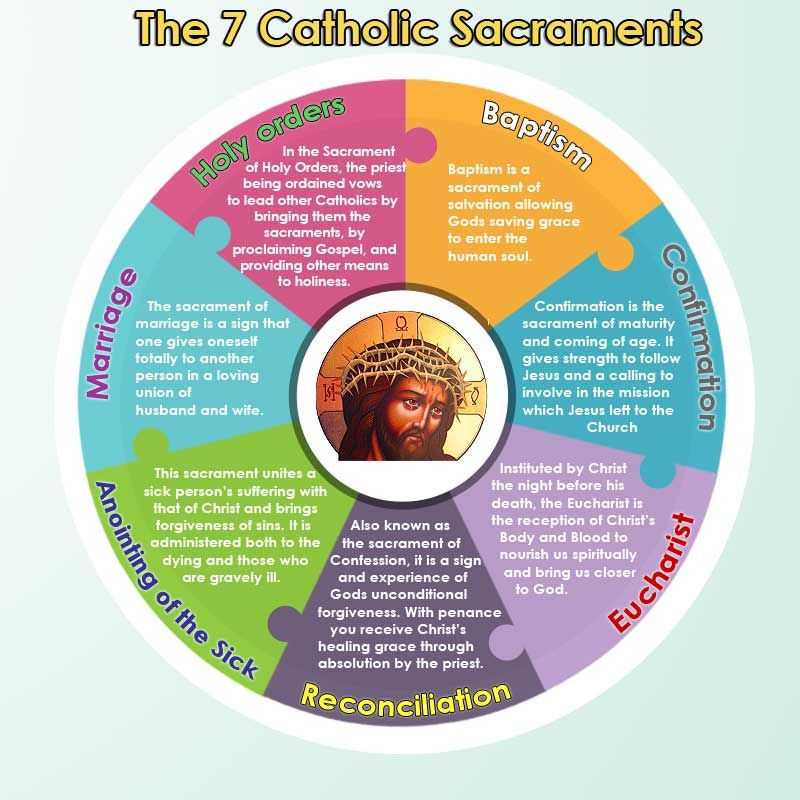 The seven sacraments of the Catholic Church [Infographic] —Baptism ...