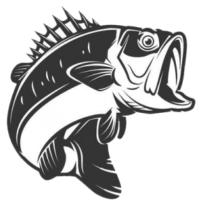 999 Fish Clipart Black And White Free Download Cloud Clipart Fish Clipart Clipart Black And White Fish Vector