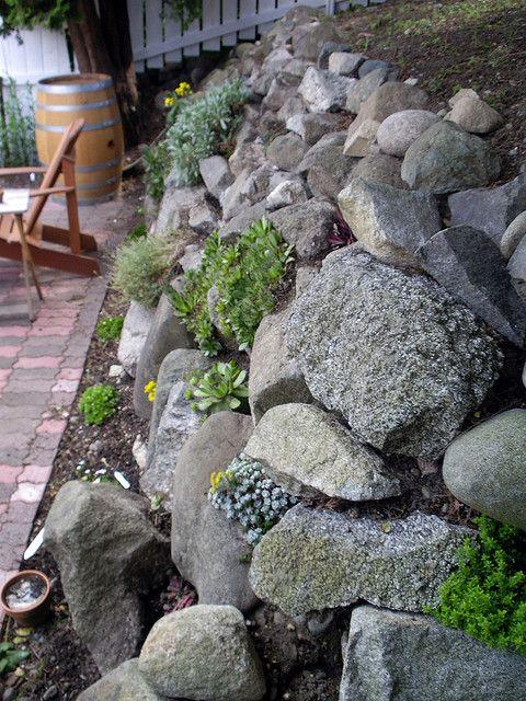 Rock Wall Now With Sedum Landscaping With Rocks Rock Garden Landscaping Garden Yard Ideas