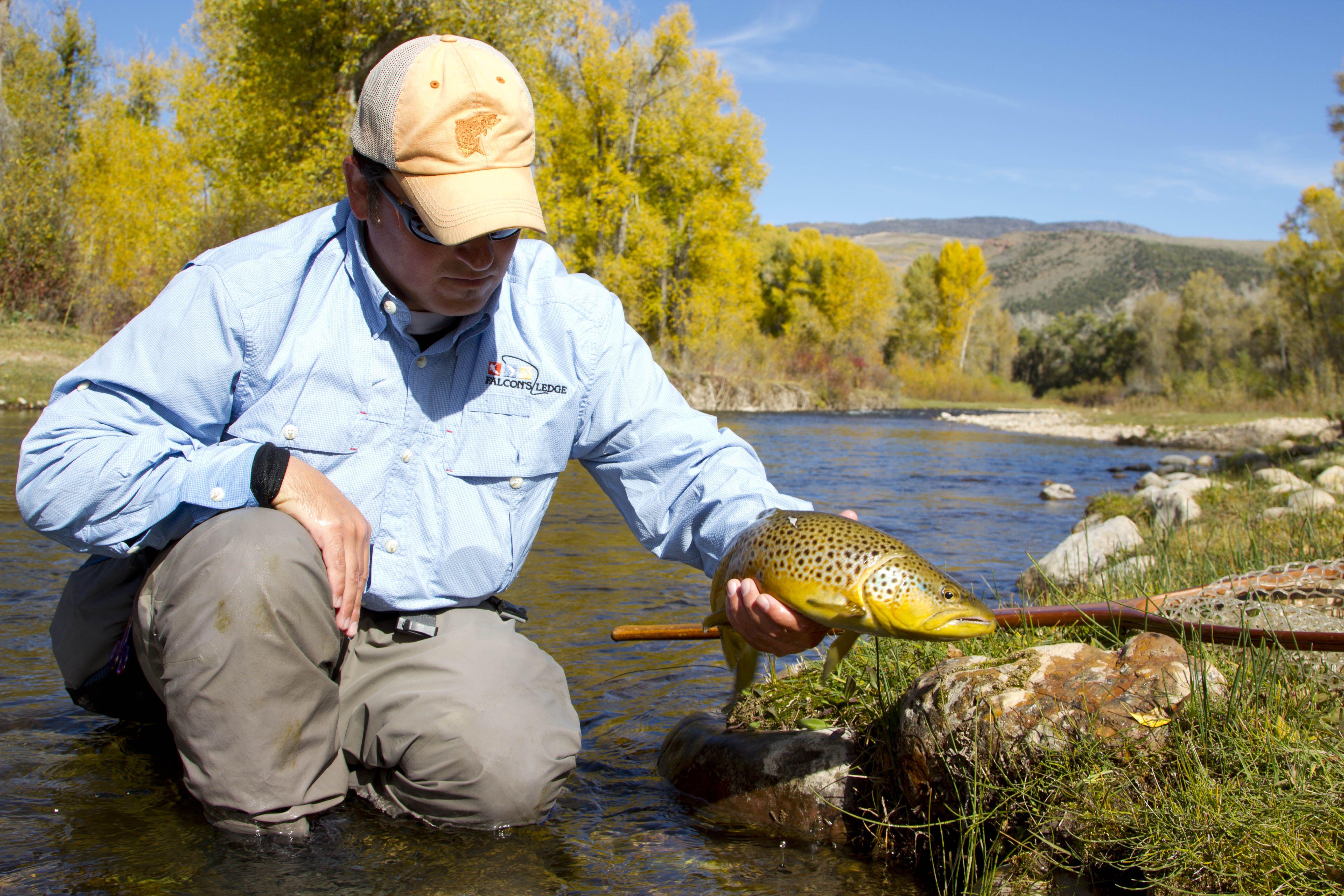 Utah Fly Fishing At Falcon S Ledge Fly Fishing Fly Fishing Tips Sea Fish