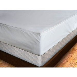 Bedbugs Ugh Like It Or Not These Critters Get Around And Possibly On Your Student S Mattress Critters Premium Bedding Mattress Covers Mattress
